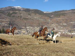 horses heaven 1