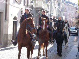 horses heaven 3