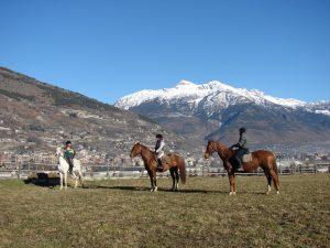 horses heaven4